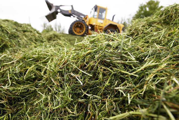 traktor pressar gräs