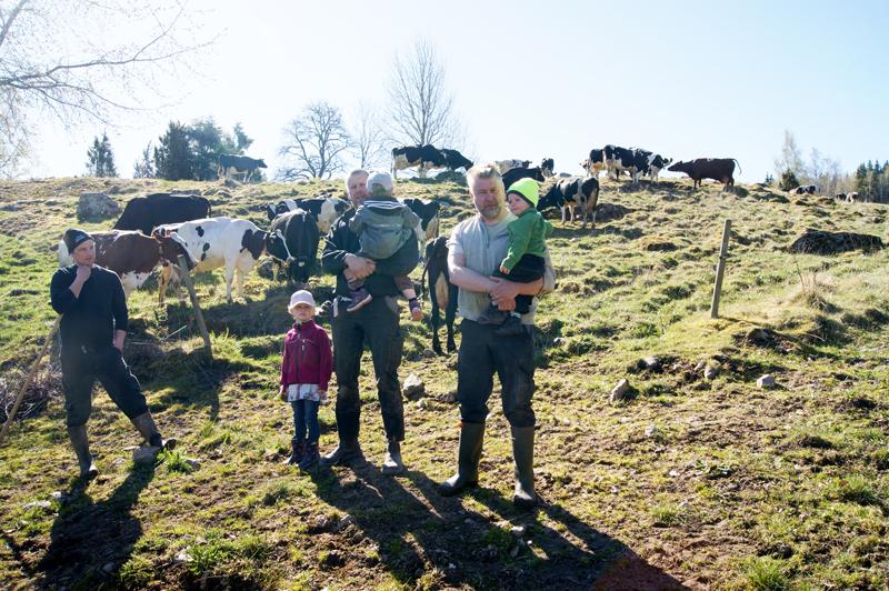 Familj i kohagen