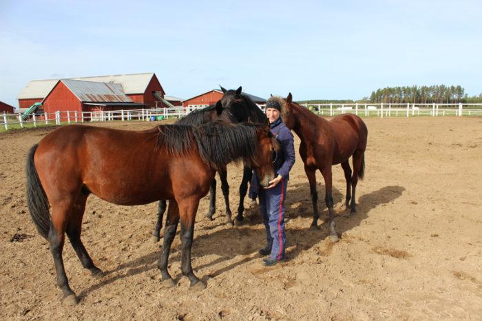 Kvinna bland hästar