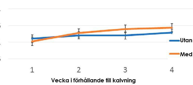 Bild på ett diagram som visarRespons i energikorrigerad mjölk efter tillsatt X-Zelit.