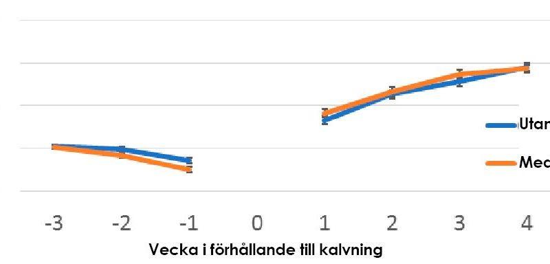Bil på ett diagram som visar Foderintag före och efter kalvning