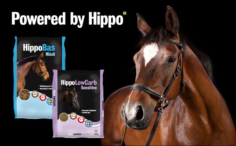 Häst och två fodersäckar från Hippo