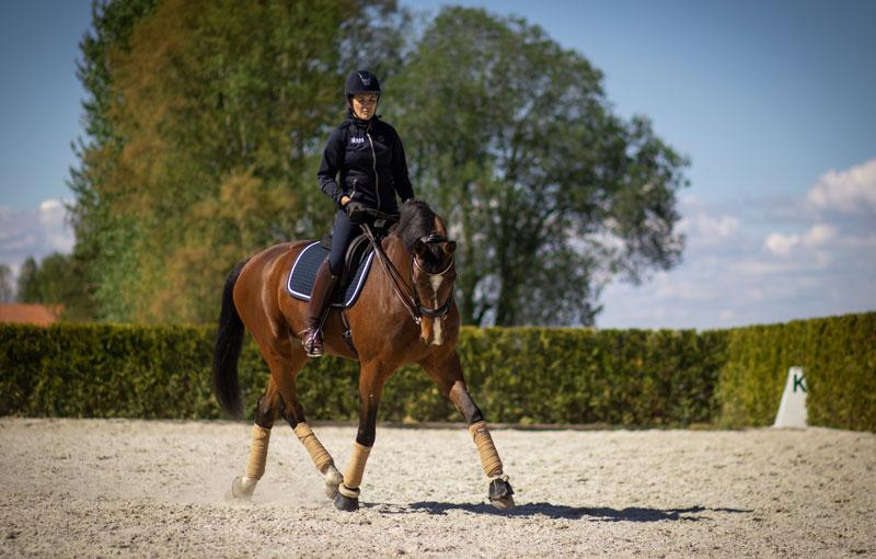 En häst och ryttare på ridbanan