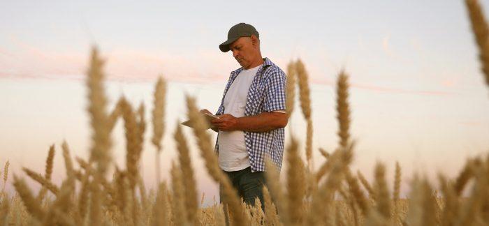 Lantbrukare i fält med läsplatta