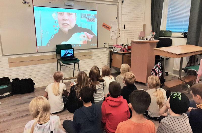 Elever i klassrum som tittar på en storbildstv