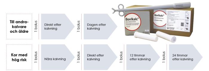 Utfodring av Bovikalc